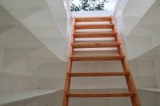 лестница и полки погреба